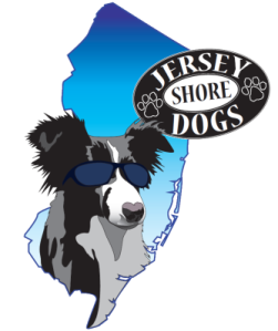 Jersey Shore Dog Training